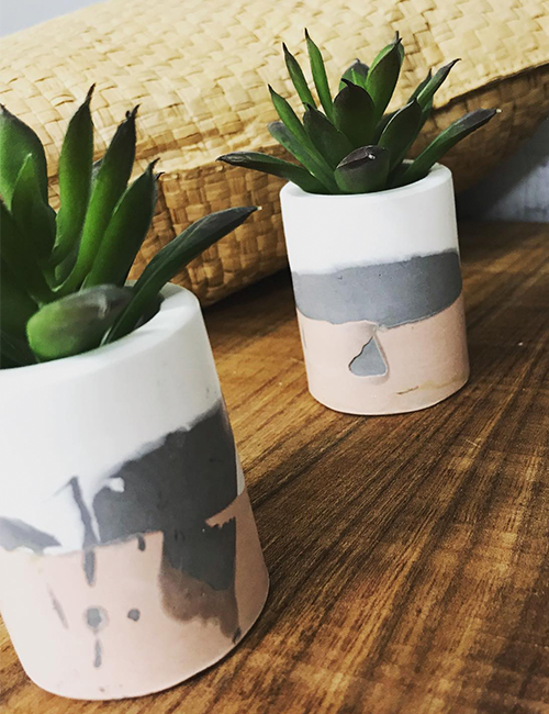 succulent and cacti pots